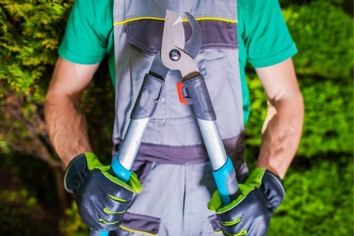 Strumenti ed utensili per giardinieri - Tecnofer Perugia